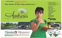 Ambrossia Farm Villa For Sale   buy sell -rent in hyderabad   Scoop.it