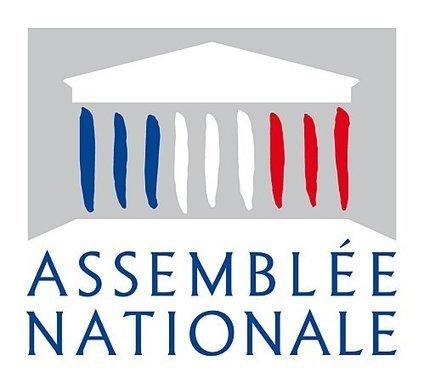 Verbatim du débat sur l'apprentissage à l'Assemblée Nationale   Culture Mission Locale   Scoop.it