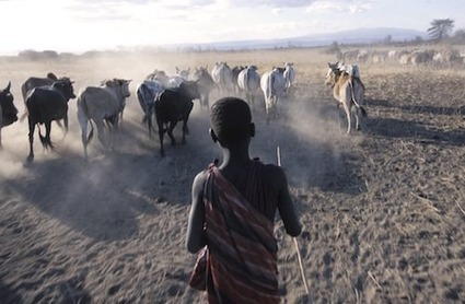 Helping Communities Cope With Tanzania's Changing Climate | Cool Green Science: The Conservation Blog of The Nature Conservancy | Sustainable Futures | Scoop.it