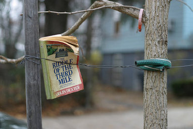 Occupy Your Sidewalk With A Micro-Library | LibraryLinks LiensBiblio | Scoop.it