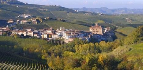 The Wines of Piedmont   Route des vins   Scoop.it