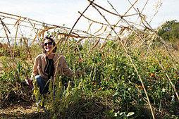 Et si l'agriculture de demain n'était ni biotech ni biologique mais permaculturelle ?   ECONOMIES LOCALES VIVANTES   Scoop.it