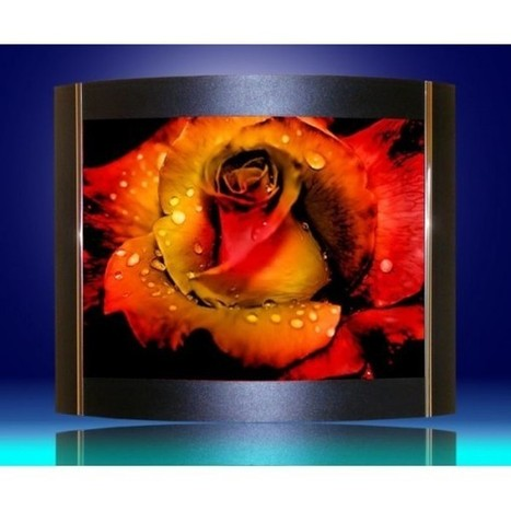 Red Rose Picture Decorative Sconce - Bargains Zone | Lighting bargains | Scoop.it
