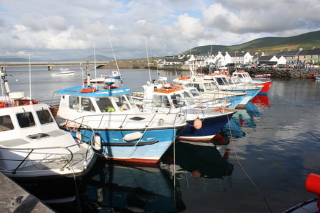 Portmagee|Skellig Michael tours|Boat tours to the Skelligs | Skellig Michael Cruises | Skellig Michael | Scoop.it
