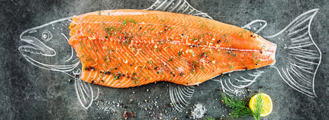 Les saumons bio sont-ils (vraiment) plus contaminés que les conventionnels? | Revue de presse écologiste | Scoop.it