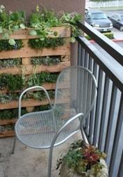 Créer un jardin ou un mur végétal à partir d'une palette en bois | hoe zelf maken | Scoop.it