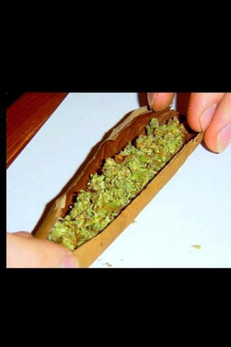 Twitter / JeromeOsoSmooth: That brown ass weed you got ...   Marijuana   Scoop.it
