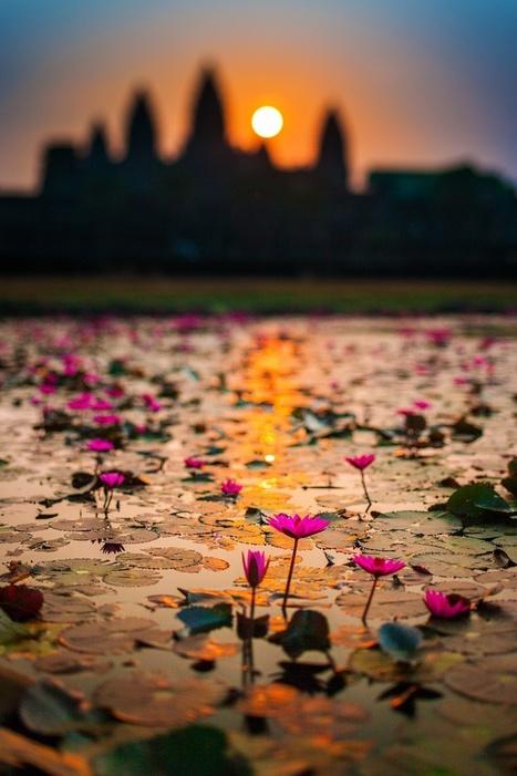 Angkor Wat, Cambodia | Interesses com asas e magia que nos liberte do peso rude do quotidiano | Scoop.it
