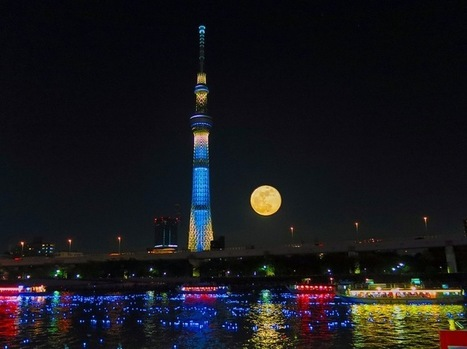 100,000 LED Lights Illuminate a Japanese River - My Modern Metropolis | アート/デザイン | Scoop.it