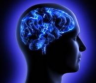 Ученые: сон после обучения укрепляет память   information science and personal culture   Scoop.it