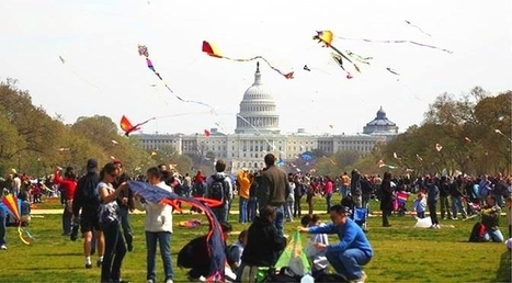 Cherry blossoms: Spring celebration in Washington DC   Italiandirectory.Review   Scoop.it