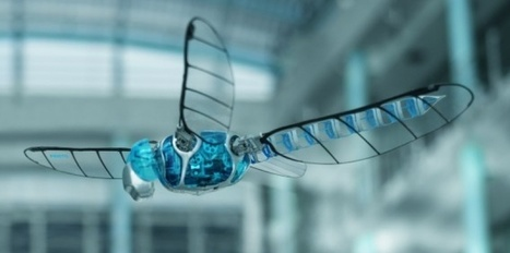 VIDÉO. Une libellule robot géante | la technologie future | Scoop.it