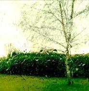 Ode à l'ondée, gloire à la pluie ! - 33Solutions - Ecrivain conseil et Rédactrice | De la plume au clavier | Scoop.it