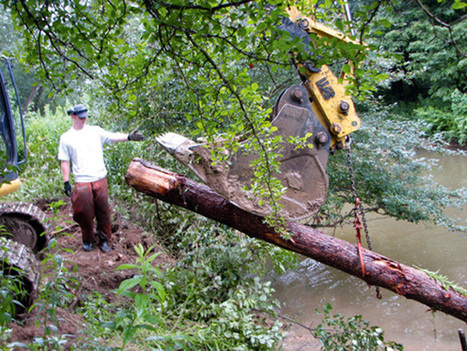 Grant improves water/angling on Laurel Hill Creek - Daily American Online | Fish Habitat | Scoop.it
