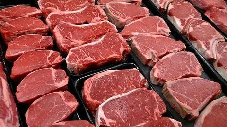 Comment: The 4 ways people rationalise eating meat | this curious life | Scoop.it
