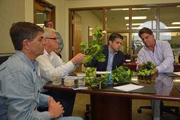 U.S. Congressmen visit Texas A&M AgriLife's front line of defense against invasive pests, diseases | Citrus Science | Scoop.it