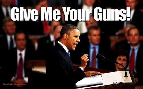 Obama Demands Unconstitutional Firearm Ban, and Unlawful No-Fly, No-Buy Ban! - Eagle Rising | Xposing Government Corruption in all it's forms | Scoop.it