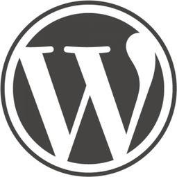 10 Reasons to Choose WordPress When you Start Blogging | ProspectNetworking  Businesses | Scoop.it