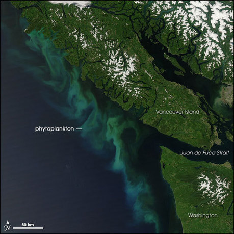 Earthquake Shaking Could Be Worse for Vancouver | Geology | Scoop.it