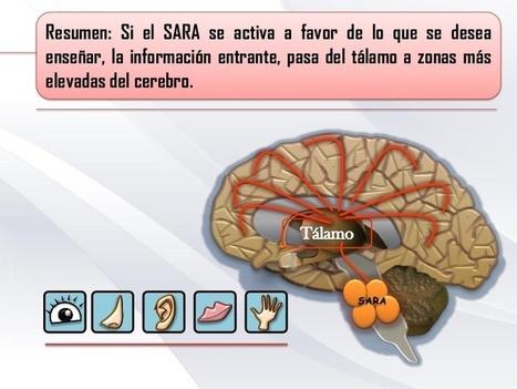 De la información al conocimiento, estrategias docentes (parte I) | Educacion, ecologia y TIC | Scoop.it
