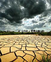 Politics over food - Chandigarh Tribune | Climate Change Unit 1 | Scoop.it