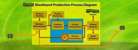 Biochemical Conversion of Biomass | Furfural and its many By-products | Scoop.it