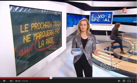 Orthographe: le prix des fautes - Envoyé Spécial Vidéo | Français langue étrangère - FLE | Scoop.it