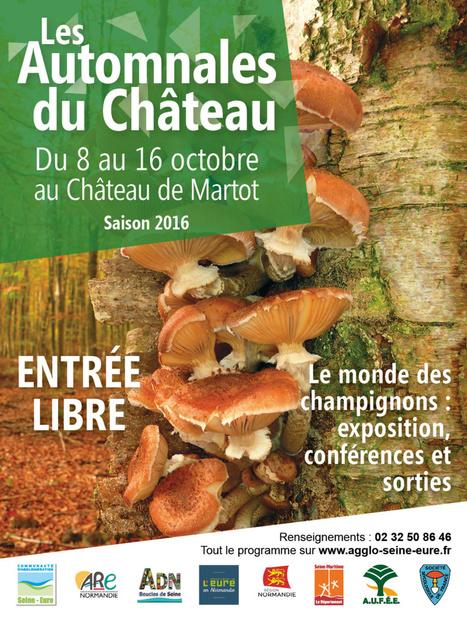 Les Automnales du château : Martot | Agenda | Communauté d'agglomération Seine-Eure | DD Normandie | Scoop.it