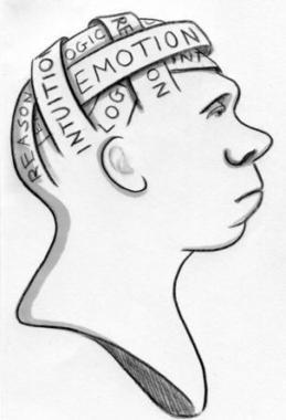 The Cognitive Science of Star Trek - Scientific American (blog) | Star Trek Scoops | Scoop.it