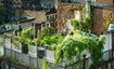Green Buildings from the Roof Down | Dow Solutionism | GreenRoofs | Scoop.it