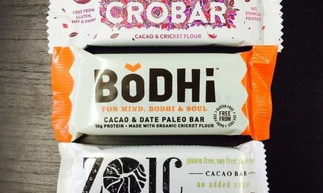 Crobar vs Zoic vs Bodhi  - Battle of the insect bars!         | Healthy Perspective | Entomophagy: Edible Insects and the Future of Food | Scoop.it