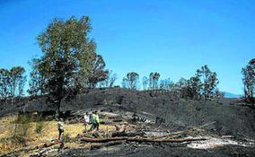 El Infoca da por extinguido el incendio de Mijas,         que... | Incendios forestales | Scoop.it