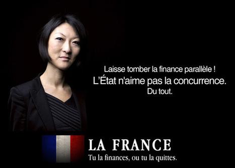 Fleur Pellerin veut euthanasier le crowdfunding en France   Hashtable   veille digitale   Scoop.it