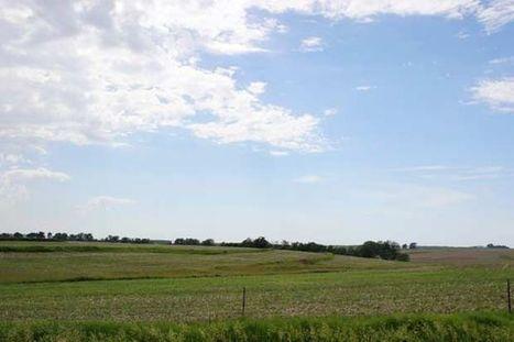 Ag land values to continue gradual decline in 2016 | Grain du Coteau : News ( corn maize ethanol DDG soybean soymeal wheat livestock beef pigs canadian dollar) | Scoop.it