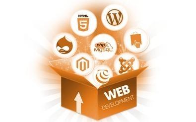 Best & Quality Dynamic Website Design   Custom Website Development   Scoop.it