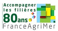 Marché de la gelée royale en France - FranceAgrimer | Filière apicole française | Scoop.it