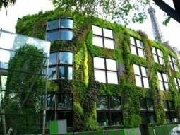 Jardines verticales para Buenos Aires | joss amezcua | Scoop.it