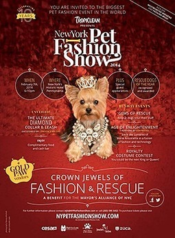 Don't Miss the Pet Fashion Event of the Season! | NYC's Animals | Scoop.it