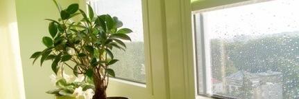 Pollution de l'air intérieur : les fiches pratiques   ConsoGlobe.com   qualité de l'air intérieur   Scoop.it