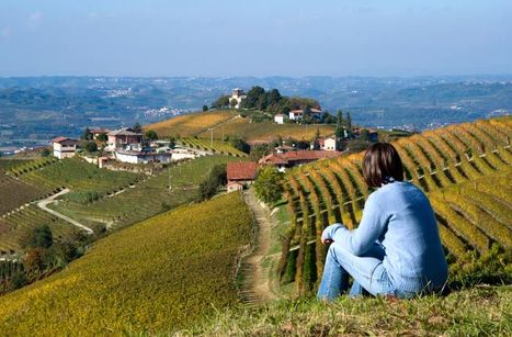 Piedmont and the World's 10 Best Trips for Wine Lovers | Italia Mia | Scoop.it