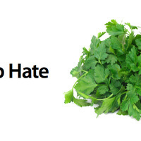 Genetic Proof That You Really Do Hate Cilantro | Troy West's Show Prep | Scoop.it
