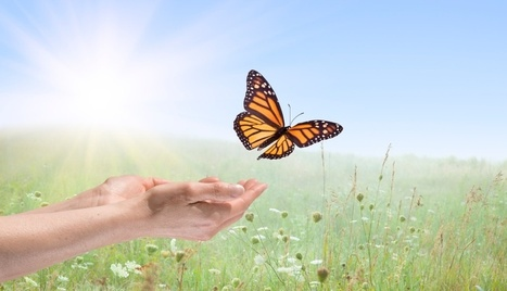 Let Go & Free Yourself: 21 Strategies   Counselling and Psychology   Scoop.it