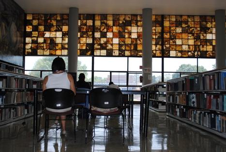 Las carencias de los estudiantes que empiezan a estudiar un posgrado – Educación y Cultura AZ | Educacion, ecologia y TIC | Scoop.it