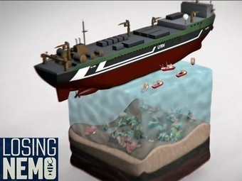Losing Nemo: Short animated film about industrial overfishing | ocngirl | Scoop.it