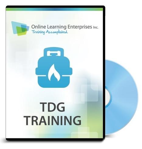 The Intricacies of TDG Trainin | olelearning | Scoop.it