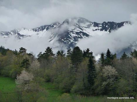 Le printemps, c'est le mélange des genres | Facebook | Vallée d'Aure - Pyrénées | Scoop.it