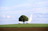 2012 : les énergies à l'heure du bilan | Chuchoteuse d'Alternatives | Scoop.it