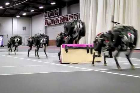 Cheetah robot lands the running jump (w/ Video) | leapmind | Scoop.it