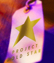 Project Gold Star high performance retail training : The Friedman Group | Recognise & Reward Achievements | Scoop.it