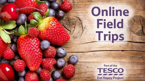 Online Field Trips - Zone | Food&Bev - Edible News (FMCG & Retail) | Scoop.it
